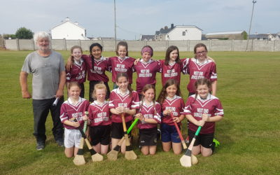 Runners up in Division 2 Camogie Final