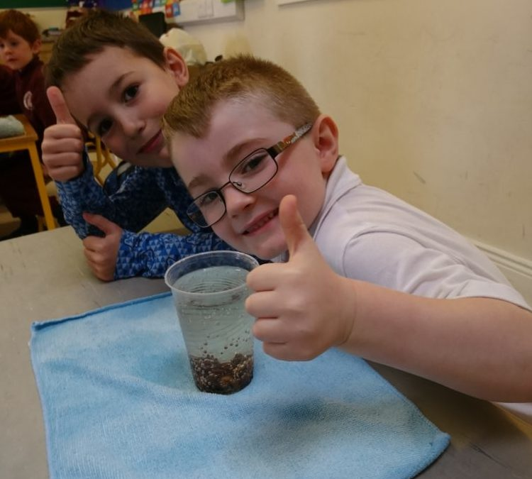 Science Week in Ms Ryan's Class