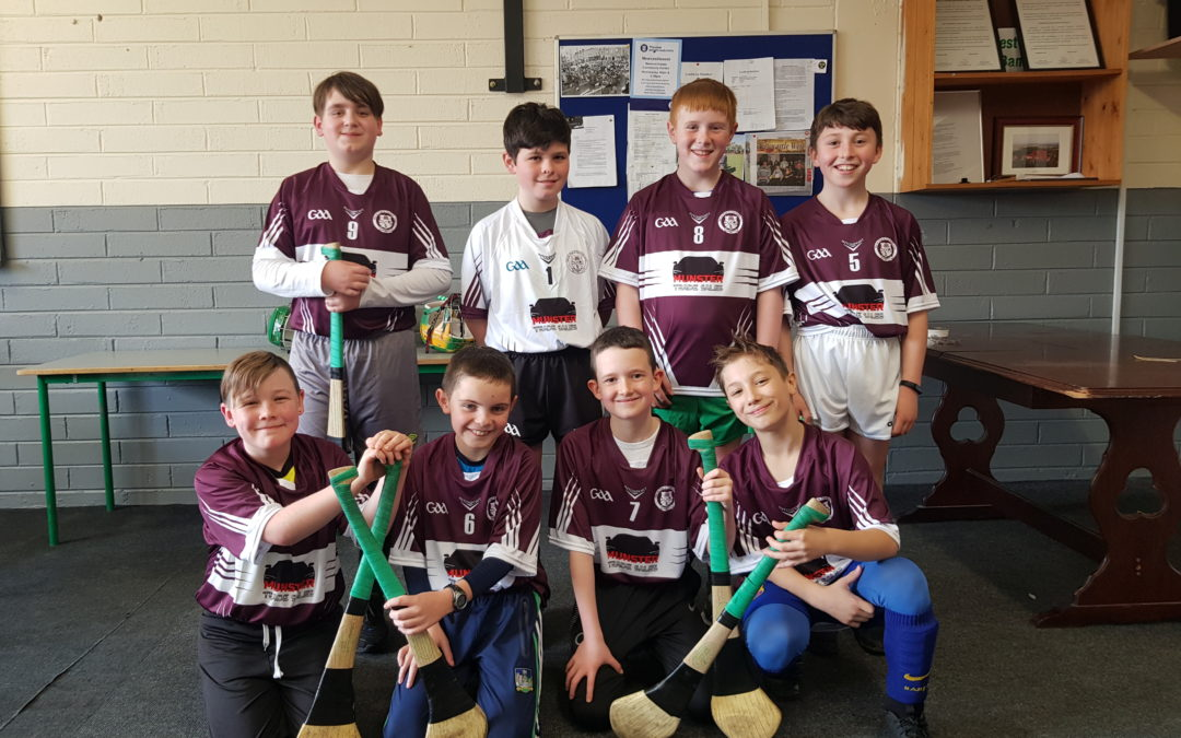 Boys Indoor Hurling