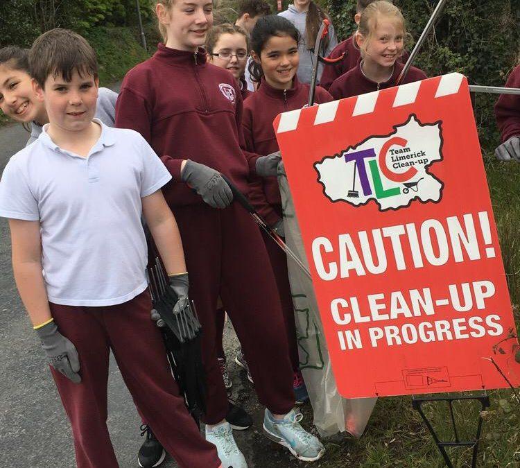 Team Limerick Clean-up