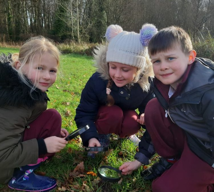 First Class and Rainbow Class visit Curraghchase